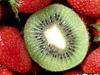 Список продуктов  для худеющих,которые можно есть без ограничений