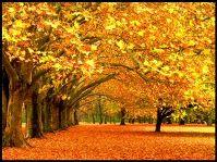 Осень- пора депрессий